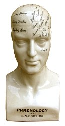 Large Ceramic Phrenology Head, 42cm
