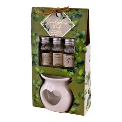 Ceramic Oil Burner With 3 Bottles of Eucalyptus Leaf Fragranced Oil