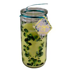 Eucalyptus Leaf Fragranced Candle In Glass Tube Jar